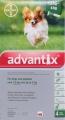 Advantix Small Dog 0.4ml 4 pip (1.5-4kg) Green *