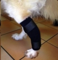 H/Pet Tarsal Support Thermomould Lrg