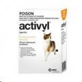 Activyl Kittens 1x0.5ml (Yellow) 4kg