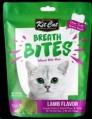 Treat BreathBites Lamb Flavour 60g Singles