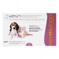 Revolution Puppy/Kitten 6% Pink 3 Pip *