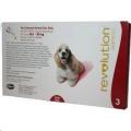 Revolution Dog 12% (10-20kg) Red 3 Pip *