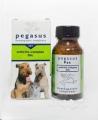 Pegasus Arthritis Complex 30c 25g