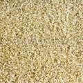 Bird Seed Clipped Barley 1kg Westerman