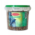 Mealworms in Tub 150g Westerman